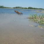 Pobliskie jezioro